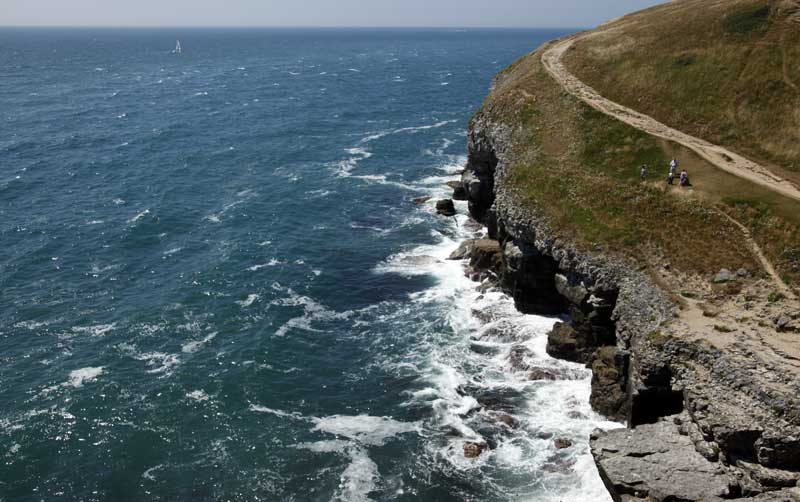 durlston-country-park-coast-web