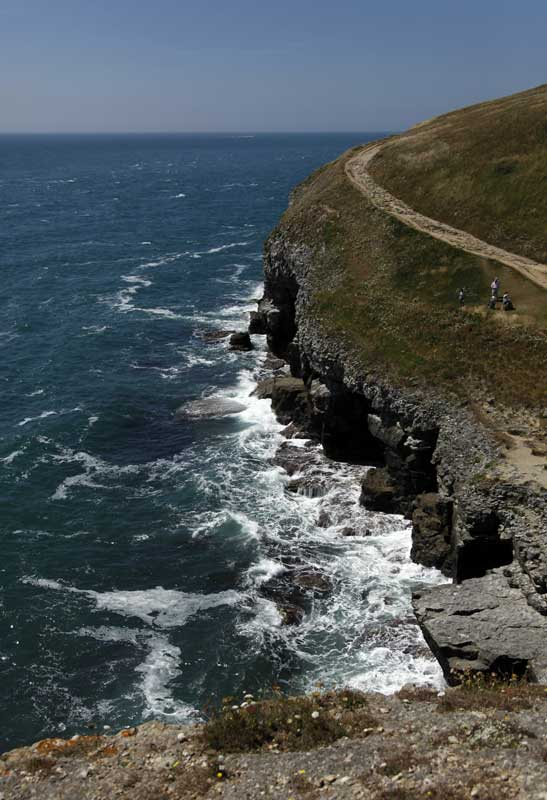 durlston-country-park-coastwebc