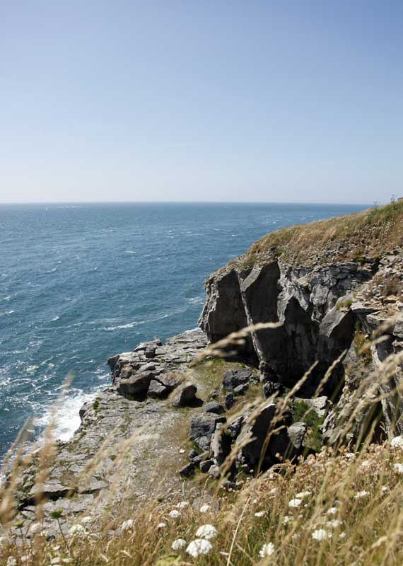 durlston-country-park-webe
