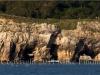 jurassic-coastline