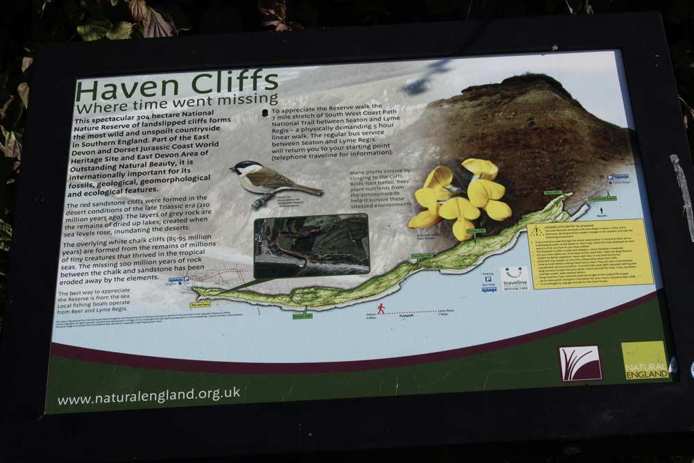 Haven-Cliffs