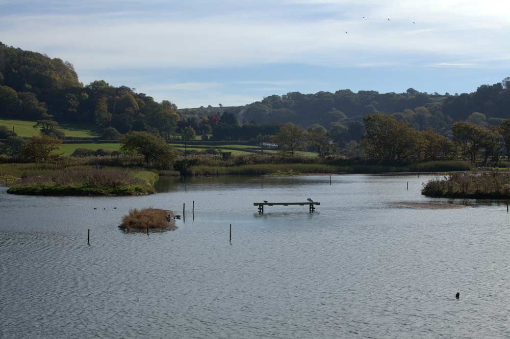 Seaton-Wetlands-East