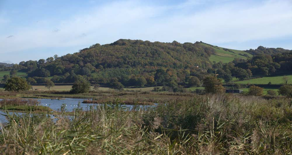 Seaton-Wetlands-Hills