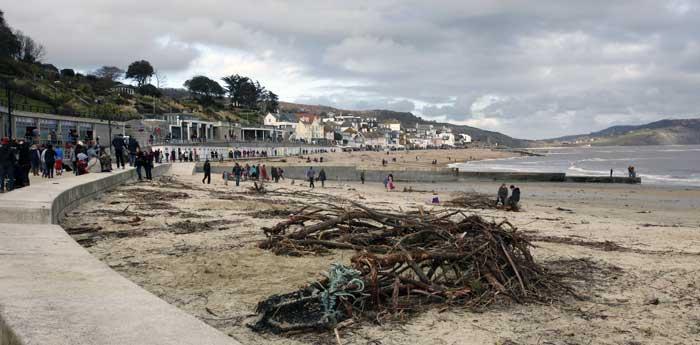lyme-bay-beachwood