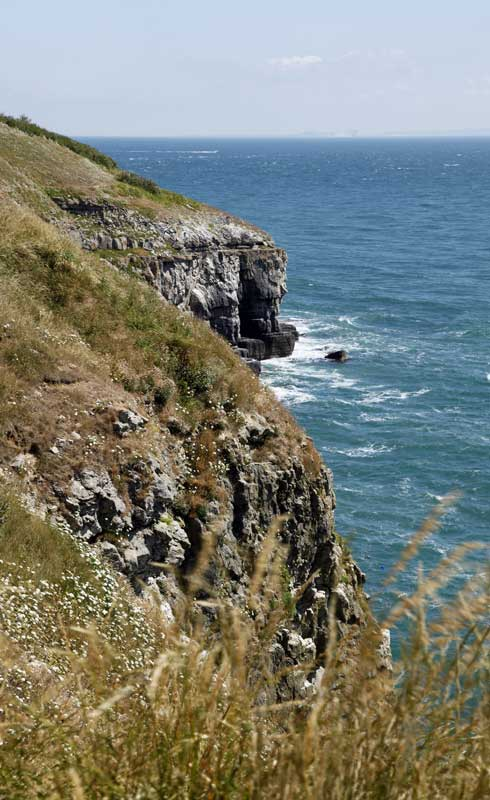 durlston-country-park-webd