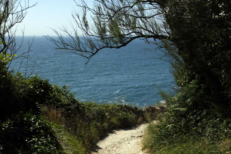 durlston-country-park-webf